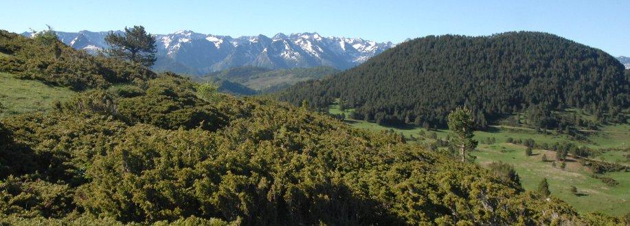 Landes, forêts et montagnes depuis les gorges de la Frau